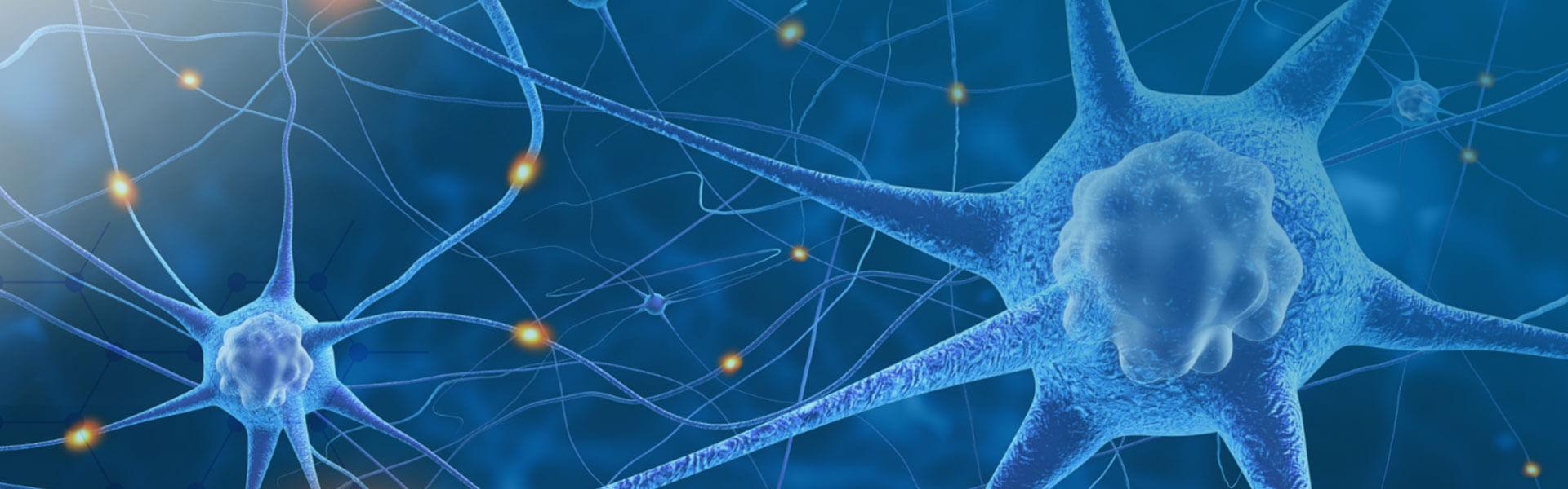 Neuropathy Management